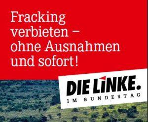 Fracking-Flyer-300x248.jpg